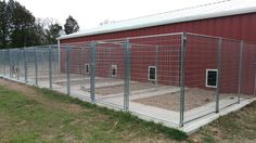 Our indoor/outdoor kennels, VHR Ranch. How To Build An Indoor Outdoor Dog Kennel Puppy Kennel, Dog Kennel Cover, K9 Kennels, Dog Kennel Designs, Kennel Ideas, Building A Dog Kennel, House Building, Luxury Dog Kennels, Outdoor Dog Kennels