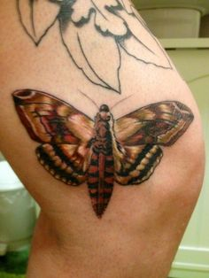 Session 9, 22/03/14, Finished moth on side of knee, by Craig Smith at Skin Graphics in Lowestoft UK