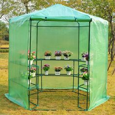 "Outsunny Ø76.4""x88.6"" Hexagonal Portable Walk-In Greenhouse Warm Plants Flower House with Shelves, Green: Amazon.ca: Home & Kitchen"