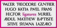 Louize - Webfont & Desktop font « MyFonts