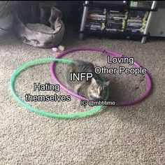 Infp Personality Type, Myers Briggs Personality Types, 16 Personalities, Myers Briggs Personalities, I Hate My Life, Enfp, Zodiac Facts, Zodiac Signs, Fb Memes