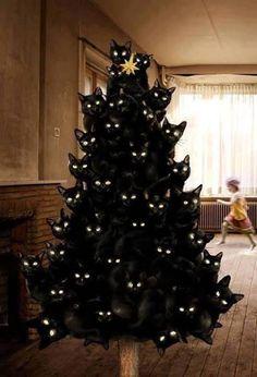 black cat Xmas tree