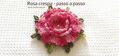 Rosa crespa passo a passo