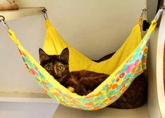 Lindas ideas para decorar la casita de tu mascota   Mascotas - Decora Ilumina Diy Cat Hammock, Hammock Ideas, Baby Hammock, Cat Cages, Cat Enclosure, Cat Condo, Cat Room, Animal Projects, Diy Projects