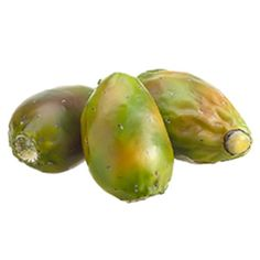 3.75'Wx8'L Artificial Bagged Indian Fig -Green (pack of 12) * Want additional info? Click on the image.