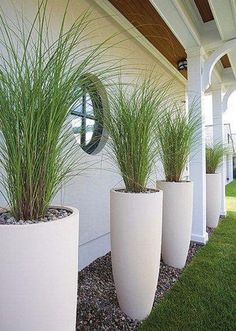 LANDSCAPE : PLANTERS ~~ Really like this vertical, elongated arrangement. Grasses are light and wispy. Cl LANDSCAPE : PLANTERS ~~ Really like this vertical, elongated arrangement. Grasses are light and wispy. Pretty framing of the house. Tall Planters, Garden Planters, Planter Pots, Planter Ideas, White Planters, Tall White Planter, Planters Flowers, Large Outdoor Planters, Large Garden Pots