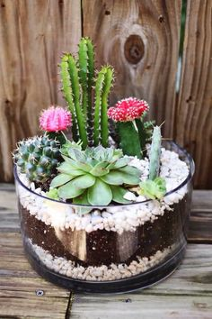 A clear bowl layered with stones and soil make a pretty planter