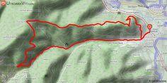 [Haut-Rhin] Hauts d'Ammerschwihr Départ de la rue des remparts près du cimetière. Allez vers l'ouest et sortir du village par le petit sentier qui démarre du pont et longe le ruisseau jusqu'à la route que vous suivez alors sur 3.7 km pour prendre le chemin forestier à votre droite. Une montée sévère de 3.5 km par un bon chemin vous emmènera au col du Herrenwasen à 711m. A partir de là c'est descente par des sentiers plus étroits et caillouteux mais très ludiques. Vos freins vont chauffer…