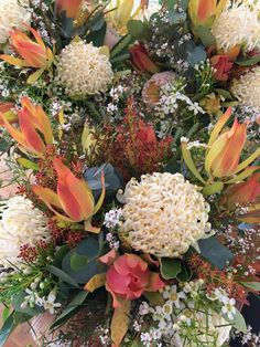 Our Native flowers this week white Waratah, maui Leucadendron, Waxflower, Ti-Tree, Stirlingia bud, Banksia Australian Native Flowers, Online Florist, Nature Images, Flower Delivery, Fungi, Bud, Fresh Water, Nativity, Beautiful Flowers