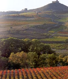 Rioja - unspoilt yet completely rich in natural beauty, succulent delicacies from local produce, timeless wineries with mesmerising wines and wonderfully warm, hospitable people who love life..... a very special place