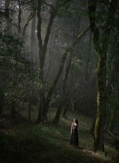 Irina found herself wandering in the forest, straying quite a distance from the portal. Being in the woods was hypnotic. The quite murmur of the wind in the tree branches, sounds of the birds, and the exquisite wildness of it all. This was no castle garden. The forest ran free, unfettered by boundaries of any sort.  Photo credit: Solitude. (Aubrey) by. Nirav Patel