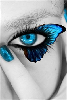 Blue butterfly eyes.