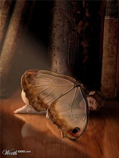 Napping on book shelf Fairy Myth Mythical Mystical Legend Elf Fairy Fae Wings Fantasy Elves Faries Sprite Nymph Pixie Faeries Elves Faeries Gnomes: Fairy Dust, Fairy Land, Fairy Tales, Magical Creatures, Fantasy Creatures, Fantasy World, Fantasy Art, Elfen Fantasy, Art Manga