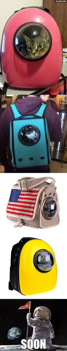 Clever Cat-Pack Lets Your Pet Travel Like An Astronaut | 9Gag [Pets - Creative - Kitties]