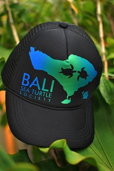TRUCKER HAT  Made in Bali - Indonesia  Price: IDR 100,000 / 10 USD 100%  profit for running our sea turtle program Please contact DION ph. +628113882685 e-mail: info@baliseaturtle.org   ~~~~~~~~~~~~~~~~~~~~~  Topi Trucker  Harga Rp 100.000,00 (seratus ribu rupiah) Hubungi DION ph. +628113882685  100% keuntungan untuk program perlindungan penyu BSTS