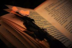 Book on Fire btw burning this book was just for photography reason! nothing personals #fire #safe #book #ashes #cool #flames