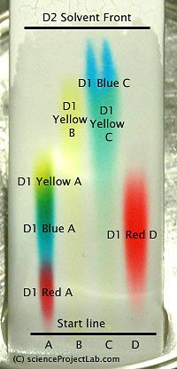lab paq lab two chromatography of food You would have to re-run the experiment using other amino acids for comparison two way paper chromatography two way paper chromatography gets around the problem of separating out.