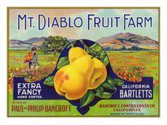 Bancroft, California, Mt. Diablo Fruit Farm Brand Pear Label Posters van Lantern Press bij AllPosters.nl