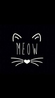 Meow cute wallpapers, dark phone wallpapers, phone backgrounds, wallpaper b Wallpaper Fofos, Cat Wallpaper, Black Wallpaper, Iphone Wallpaper, Crazy Cat Lady, Crazy Cats, Phone Backgrounds, Wallpaper Backgrounds, Lettering