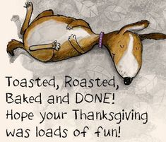Hope Your Thanksgiving Was Loads Of Fun thanksgiving thanksgiving quotes funny thanksgiving quotes day after thanksgiving quotes Thanksgiving Quotes Funny, Thanksgiving Eve, Thanksgiving Celebration, Dinner Quotes, Grumpy Cat Christmas, Gobble Til You Wobble, Holiday Pictures, Holiday Ideas, Autumn Ideas