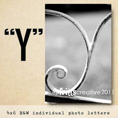 Letter Y Alphabet Photography  Black and White 4x6 Letter Photo