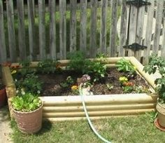 My small garden has proven to be a real learning experience! Yes, a raised bed garden makes growing vegetables and plants easier, but nothing...