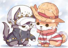 One Piece <3 Law, Luffy