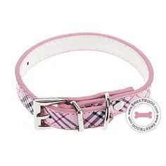 collier pour chien girly