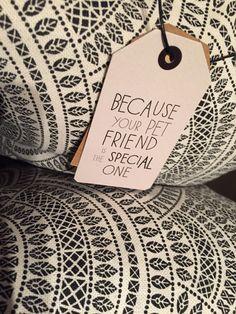 Demuéstrale tu 💕 con un  🎁 Adorable!! Tenemos un 10% de descuento en collares, correas y arneses en nuestra tienda!