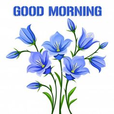 Good Morning Images – Today I am Share With You Latest Free New Good Morning Images , HD Good Morning Photo Pictures , Top Good Morning Images Best Good Morning Images For Whatsaap & Facebook . Cute Good Morning Gif, Beautiful Good Morning Wishes, Good Morning In Hindi, Latest Good Morning Images, Good Morning Photos, Morning Pictures, Wallpaper Pictures, Photo Wallpaper, Pictures Images