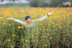 Two Days One Night, 1st Night, Music Film, Dance Music, Cha Tae Hyun, Jung Joon Young, Korean Variety Shows, Film Books, Season 3