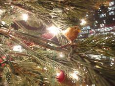 Golden Bird Ornament from Honfleur, France.