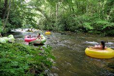 Tubing near Asheville