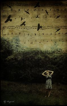 bird melody. by Ingrid Photography, via Flickr