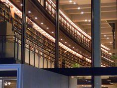 多賀城市立図書館 壁一面の本棚