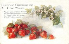 CHRISTMAS GREETINGS AND ALL GOOD WISHES strawberries