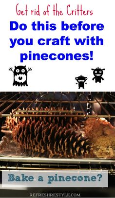 A must when crafting with pinecones! Get rid of any critters before you use them! #pincones #crafting