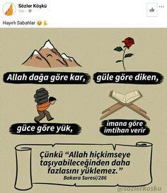 Allah, Movies, Movie Posters, Films, Film Poster, Cinema, Movie, Film, Movie Quotes