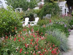 BBY 2010 - Nancy's Garden - An Evolving Legacy Garden Crafts, Plants, Plant Sale, Master Gardener, Master Gardener Program, Ornamental Plants, Garden Tours, Backyard