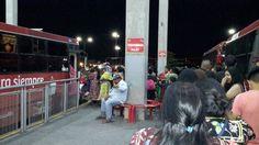 Decenas de personas aprovechan servicio nocturno del ViveBus y rutas alimentadoras | El Puntero