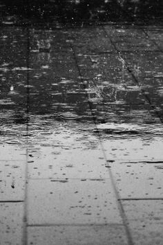 New free photo from Pexels: https://www.pexels.com/photo/water-rain-wet-drops-69927 #black-and-white #rain #raindrops