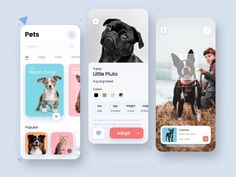 Pets App designed by Tribhuvan Suthar for uigate. Connect with them on Dribbble; Ux Design, Book Design, Design Layouts, Flat Design, Ui Design Mobile, Mobile Ui, Dog Cots, Ui Web, Responsive Web