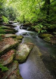 Image result for the glen cornwall