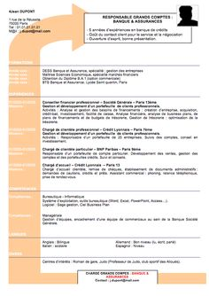 Fake Resumes Captivating Fake Amazon Page Is Best Online Resume Ever  Pinterest  Online .