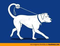 El perro perfecto.