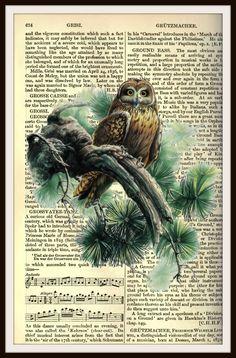 "Vintage Art Print Owl on Ephemera Dictionary Page, Print Wall Decor, 8.5 x 11"" Unframed Printed Art Image"