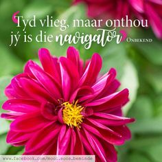 Me Quotes, Motivational Quotes, Inspirational Quotes, Hart, Printable Quotes, Afrikaans, Lisa, Printables, Life Coach Quotes