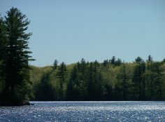 A photo of Bunganut Lake in Lyman, Maine; not a cloud in the sky (5-12-12).