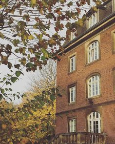It's like Hogwarts  #today#goodmorning#november#morning#study#fall#autumn#studytime#studentlife#düsseldorf#tuesday#motivation#motivationtime @flo_abarts