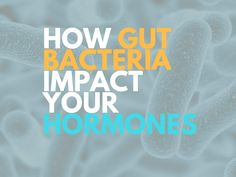 What you will discover: Gut health and gut bacteria are the most overlooked elements of hormonal balance (includes menopause, thyroid issues, estrogen excess). The microbiome is now considered an endocrine...